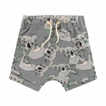 Koala Grey Shorts