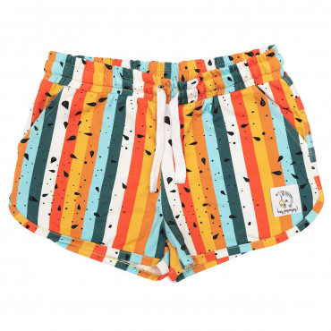 Multicolour Stripes Shorts